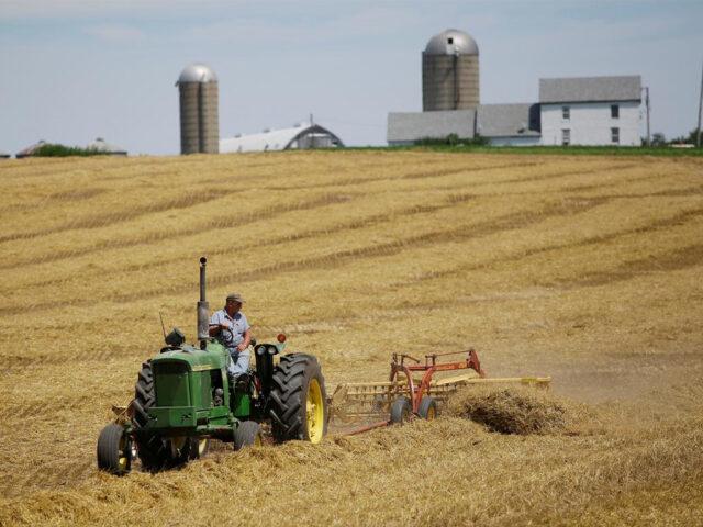 Organic Farming and High Tunnels